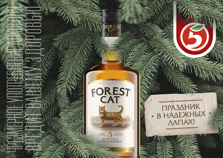 01 Forest Cat